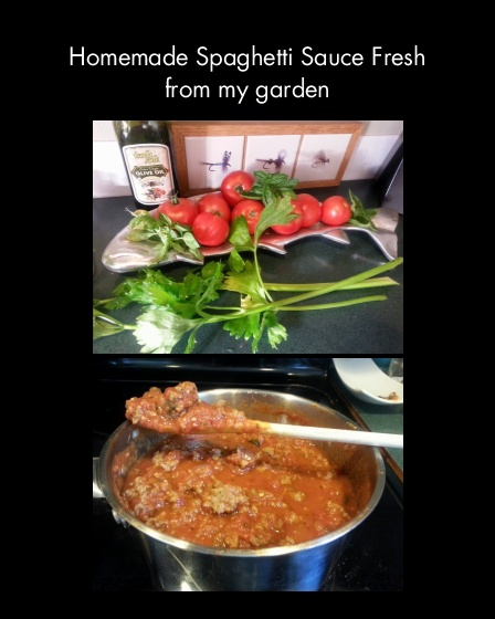 Homemade Spaghetti Sauce Fresh From My Garden Hope 39 S